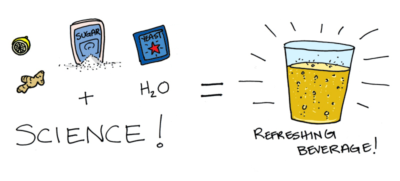 Gingerbeer_science.jpg